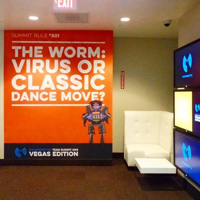 Custom Wall Graphics for Malwarebytes in Las Vegas